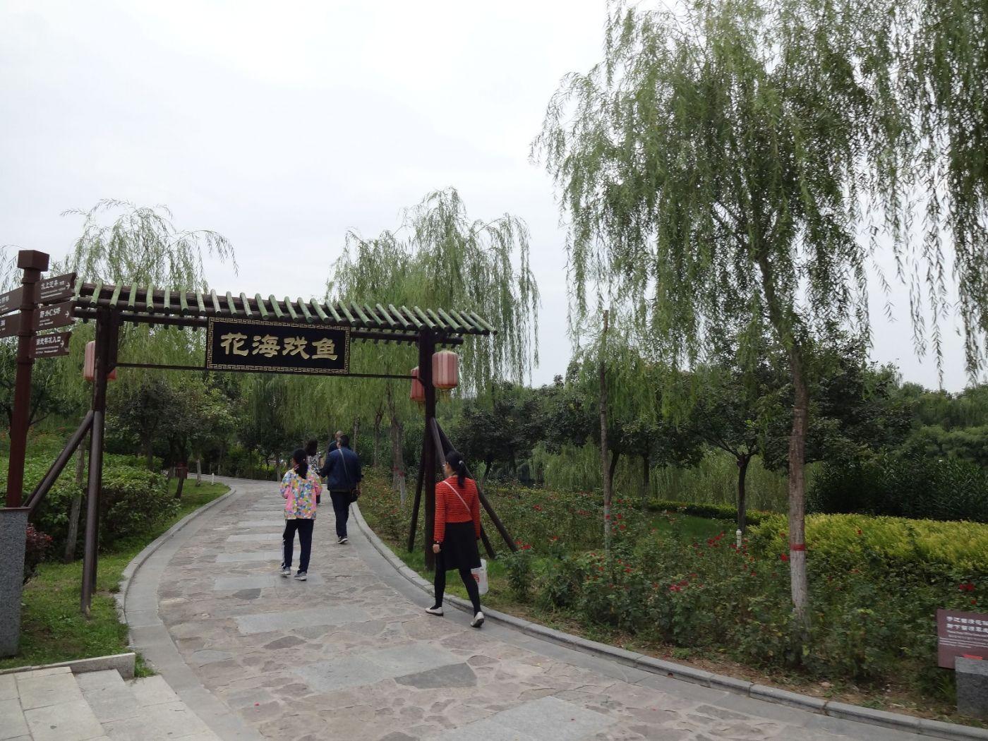 游西安大雁塔,小雁塔,华清池 汉城湖 补图----3_图1-8