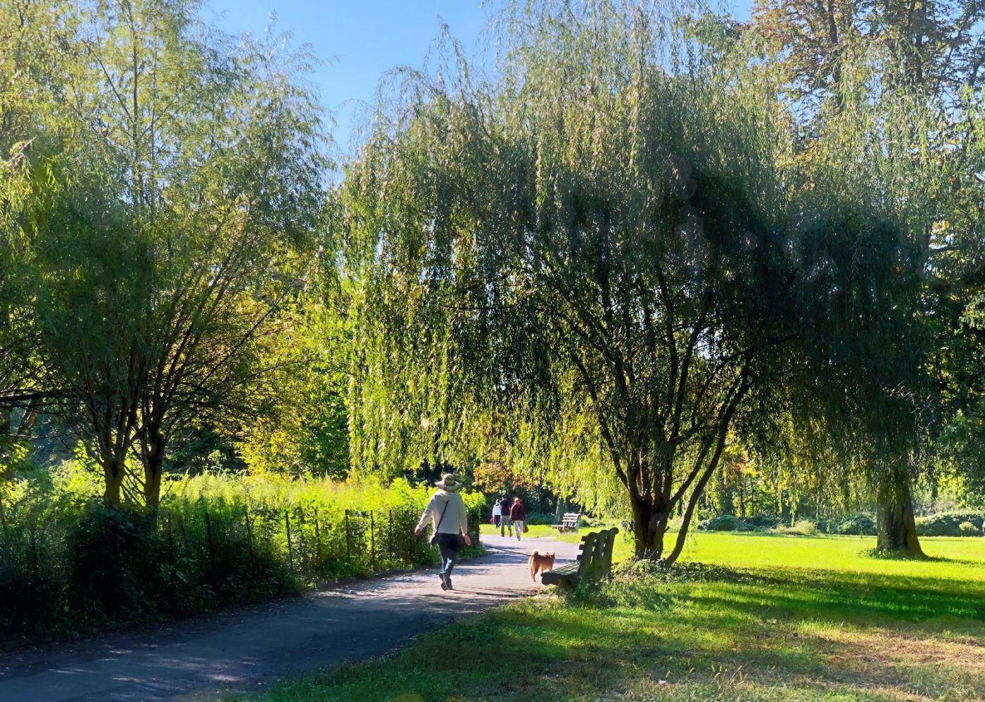【田螺随拍】凯辛娜公园点点秋色_图1-22