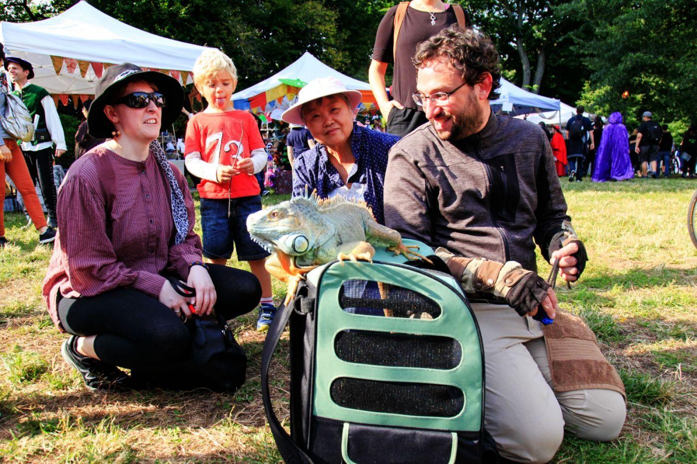 一年一度的崔恩堡公园中世纪节热闹非凡_图1-12