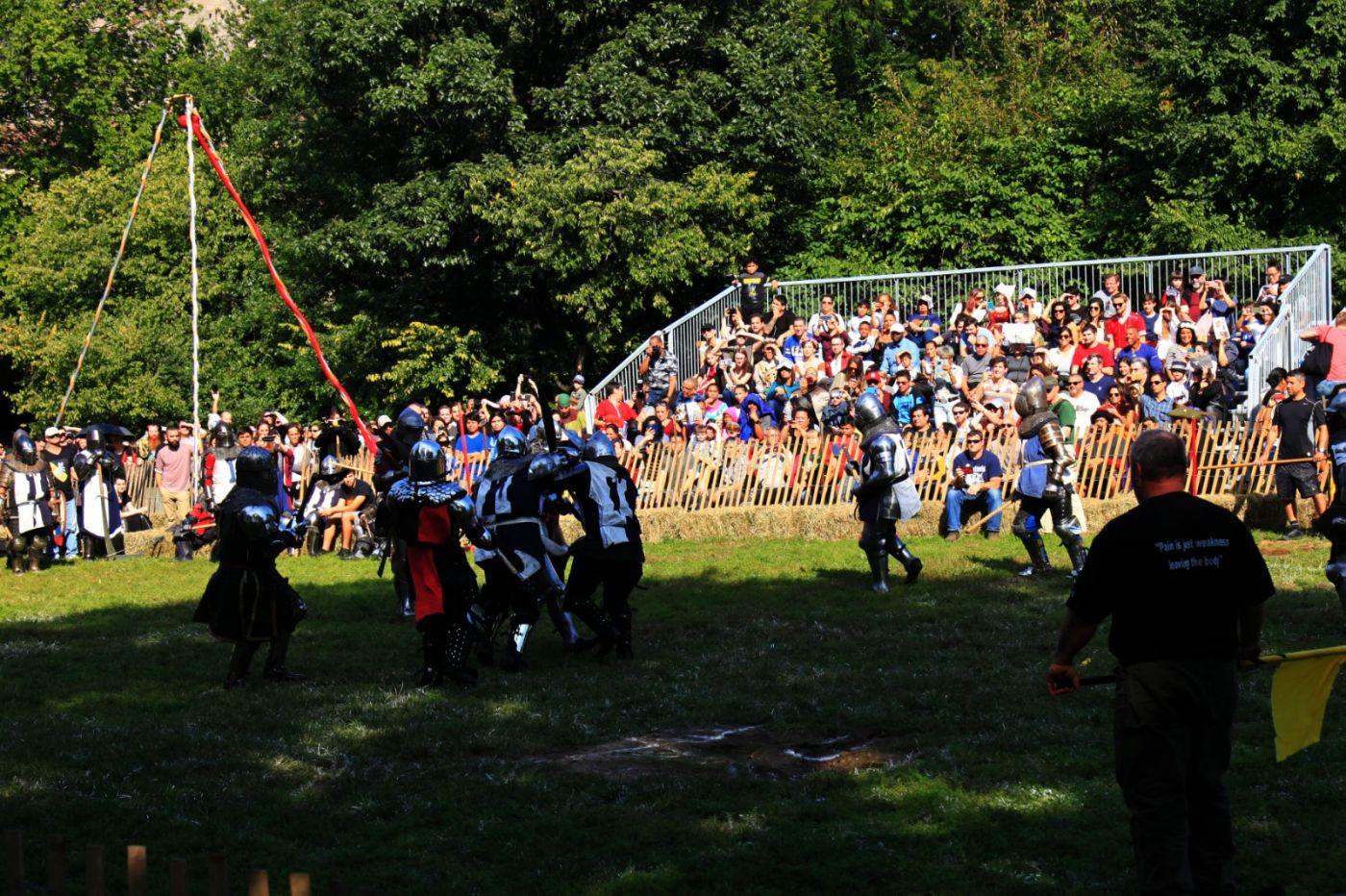 一年一度的崔恩堡公园中世纪节热闹非凡_图1-24