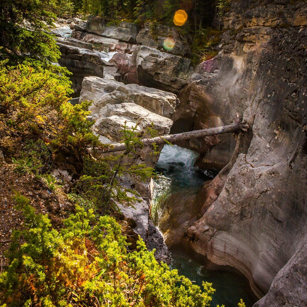 加拿大玛琳峡谷(Maligne Canyon),有一线天的感觉_图1-9