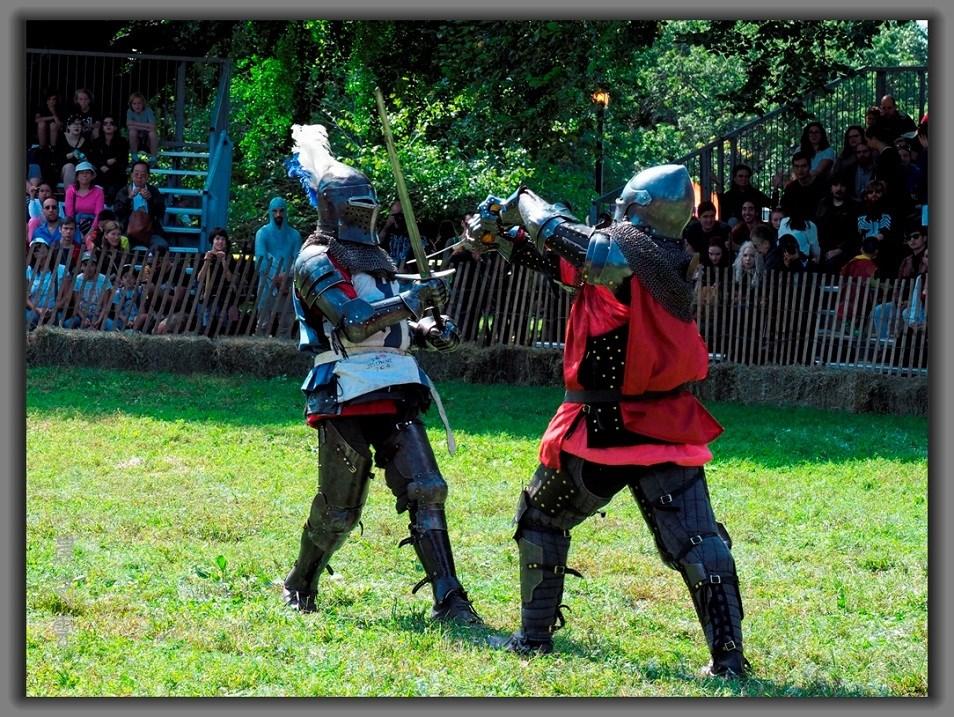 难得一见的中世纪节,(Medieval Festival)_图1-5