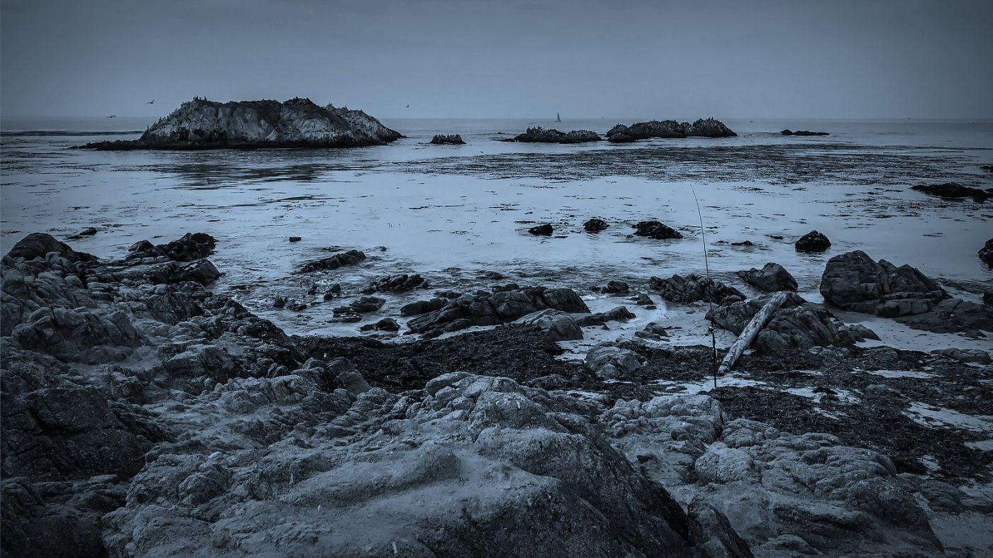 加州17英里,海边的奇形礁石_图1-14