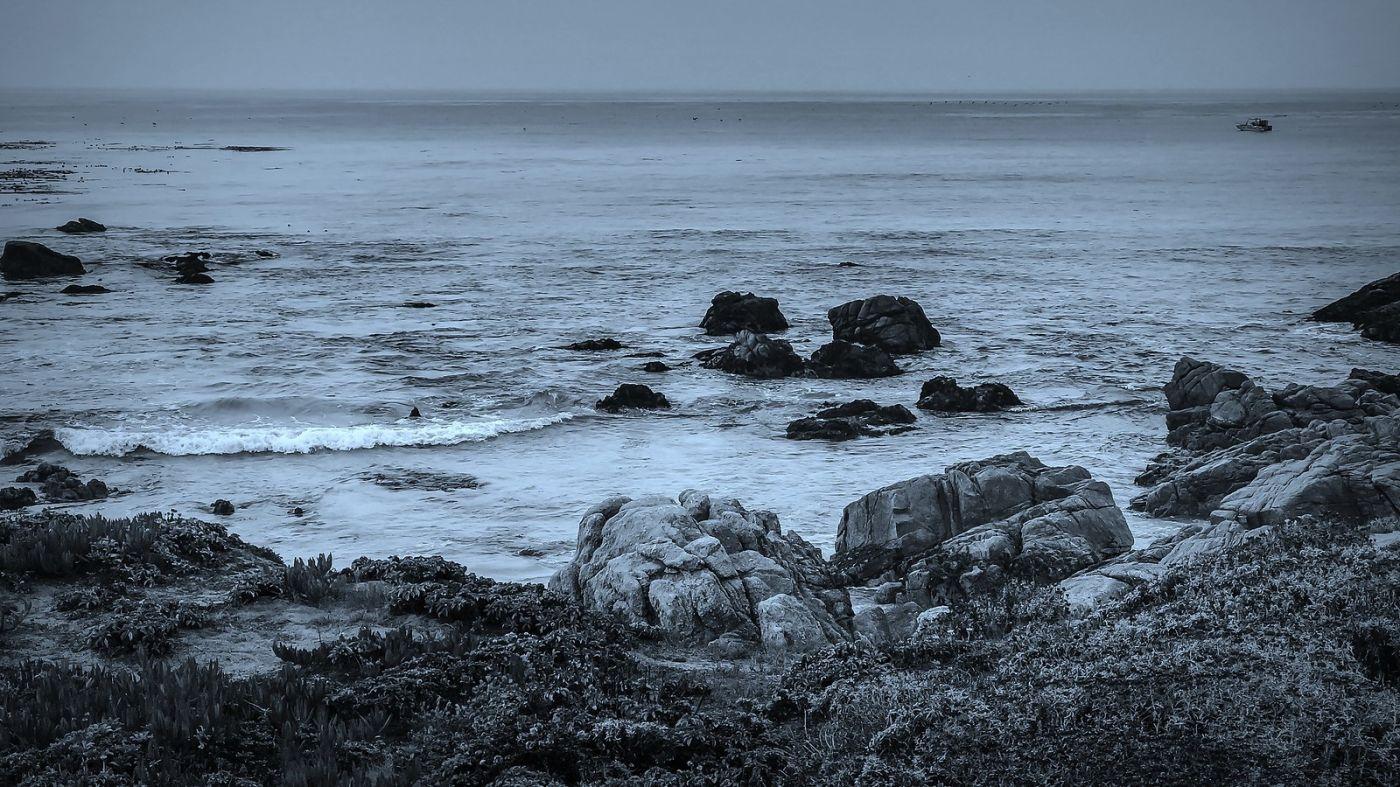 加州17英里,海边的奇形礁石_图1-13