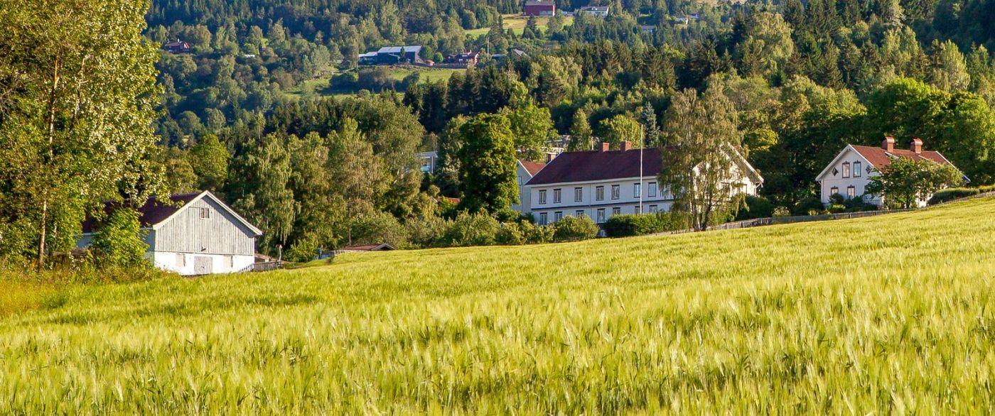 挪威利勒哈默尔(Lillehammer),美丽的小城依山傍水_图1-18