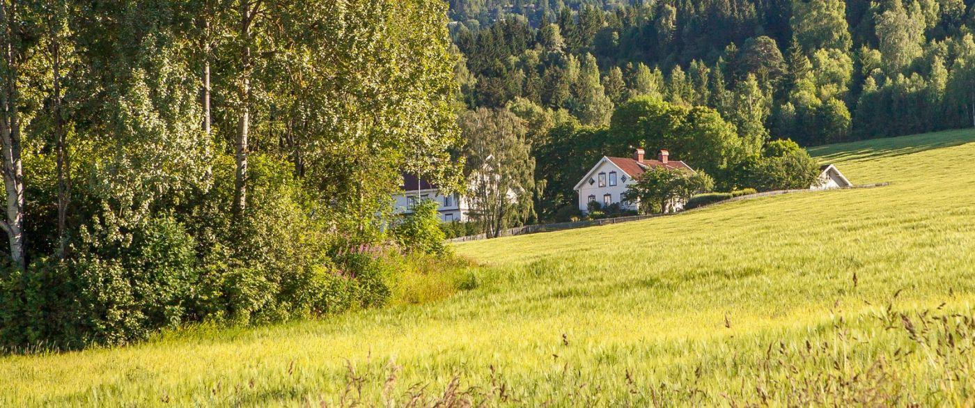挪威利勒哈默尔(Lillehammer),美丽的小城依山傍水_图1-13