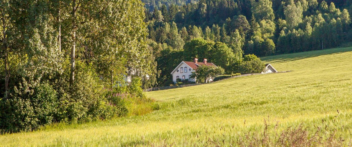 挪威利勒哈默尔(Lillehammer),美丽的小城依山傍水_图1-14