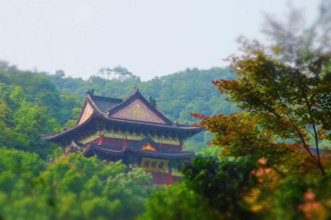 美丽的故乡(一)_图1-8