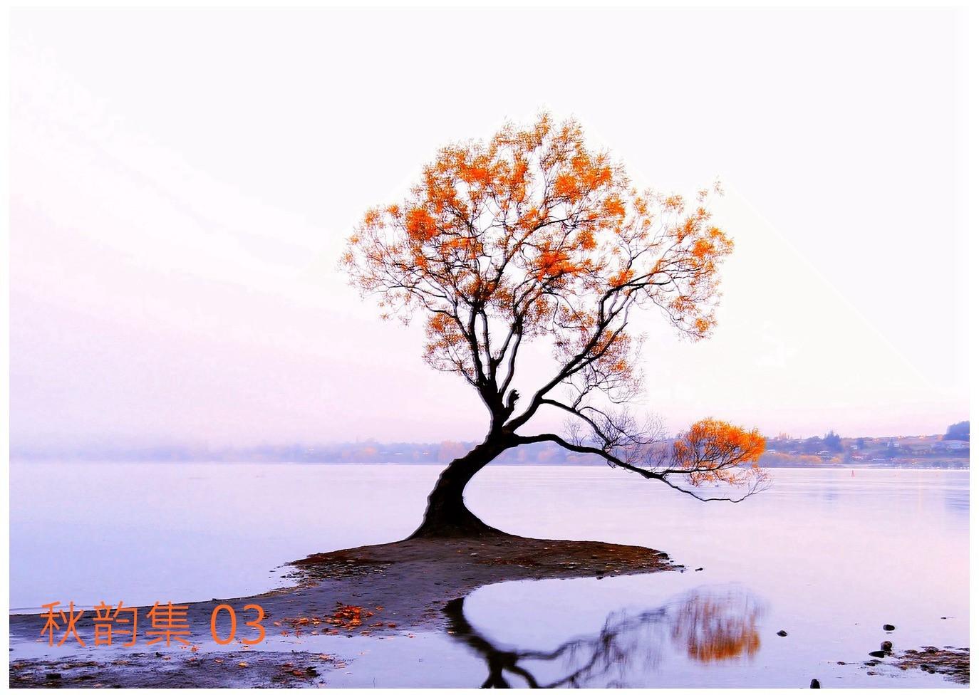 地球南温带的秋天_图1-2