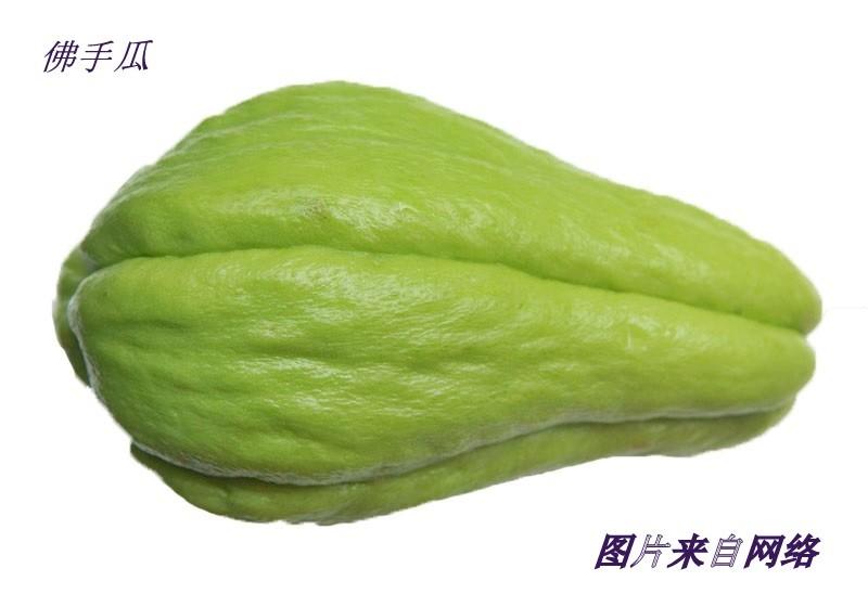 丝瓜花与佛手瓜花_图1-28