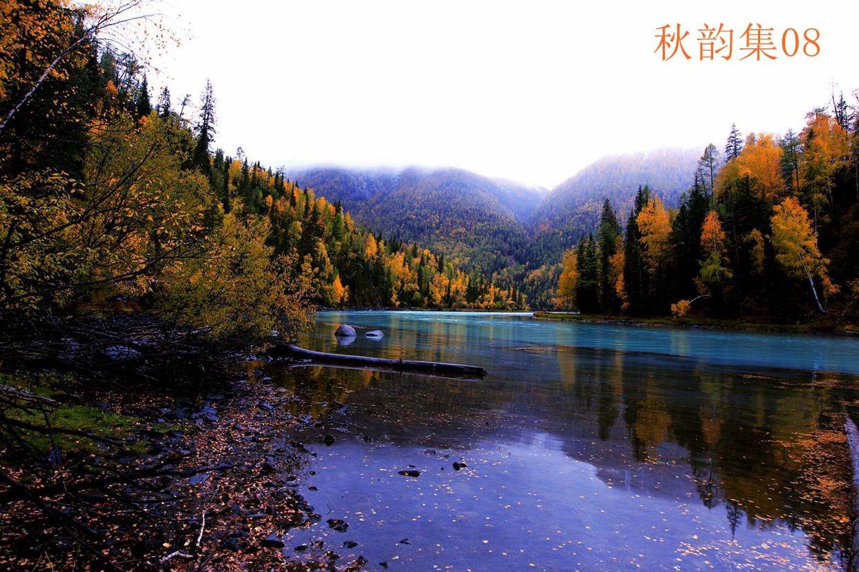 喀纳斯湖的秋景_图1-2