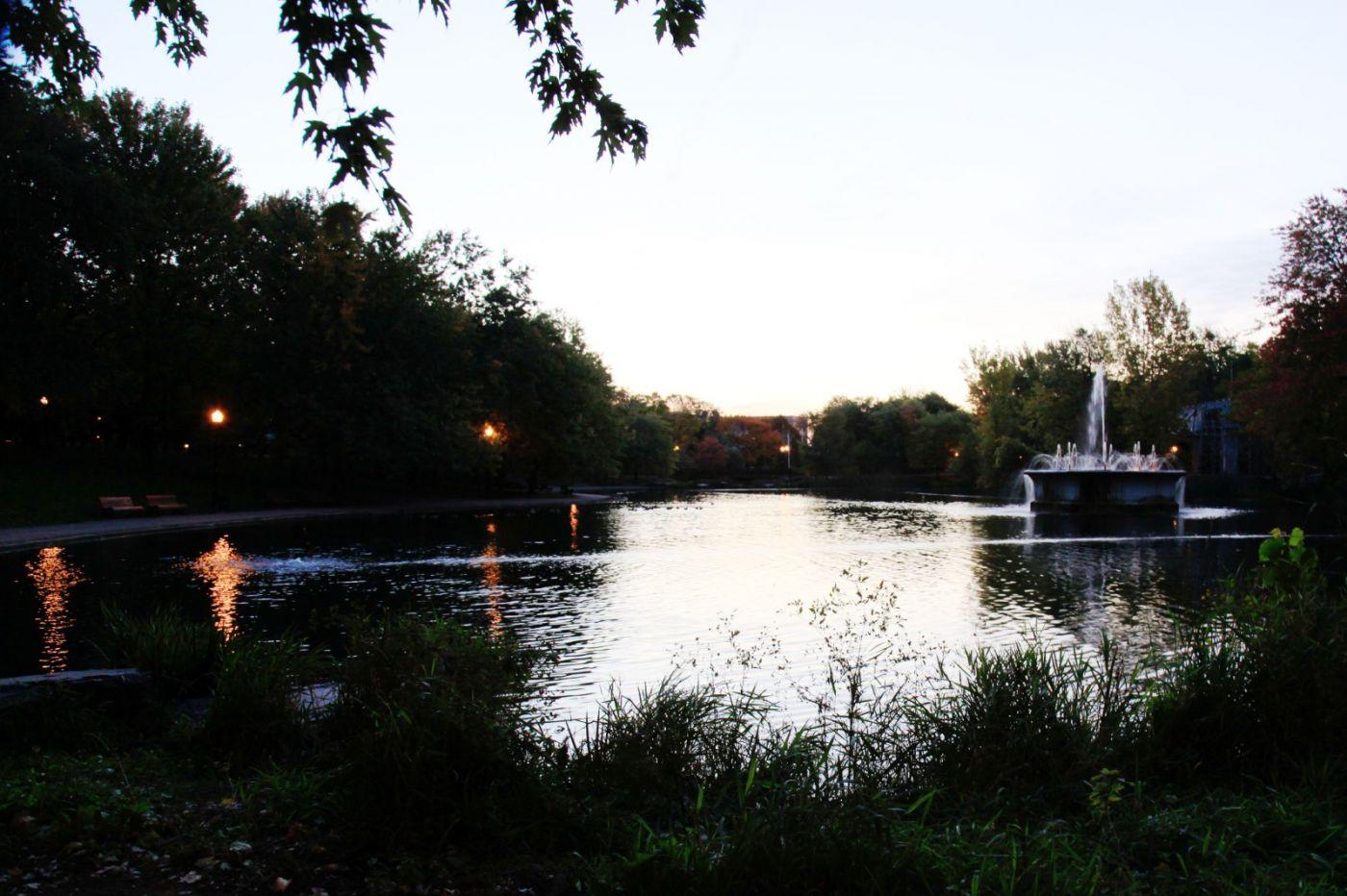 清晨在加拿大蒙特利尔公园赏枫_图1-2