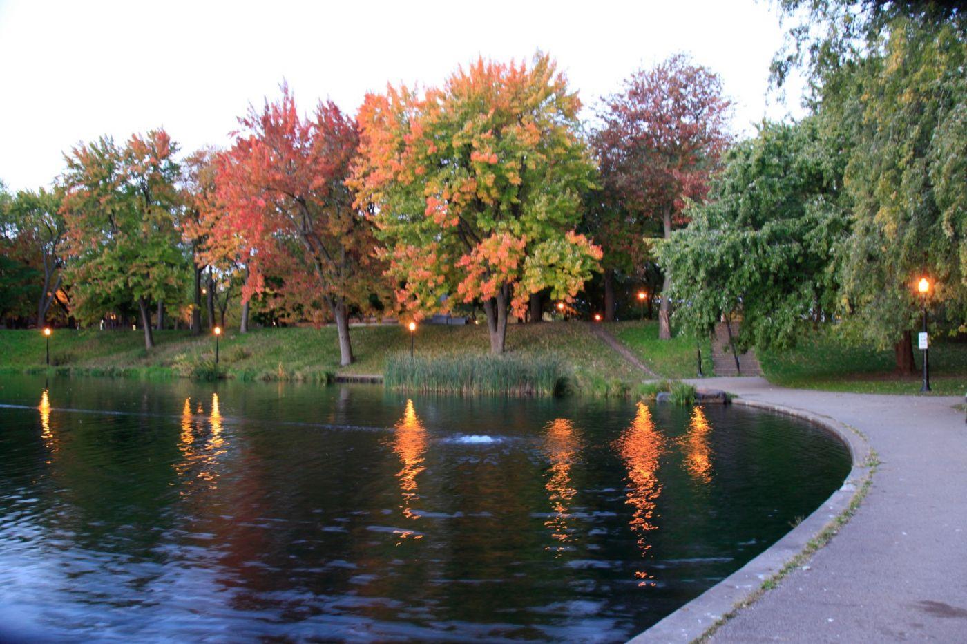 清晨在加拿大蒙特利尔公园赏枫_图1-1