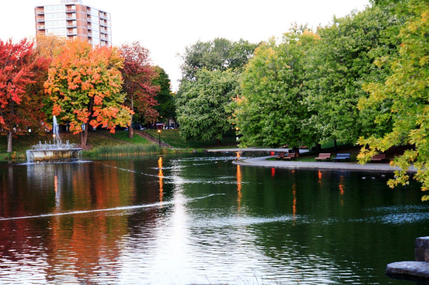 清晨在加拿大蒙特利尔公园赏枫_图1-14