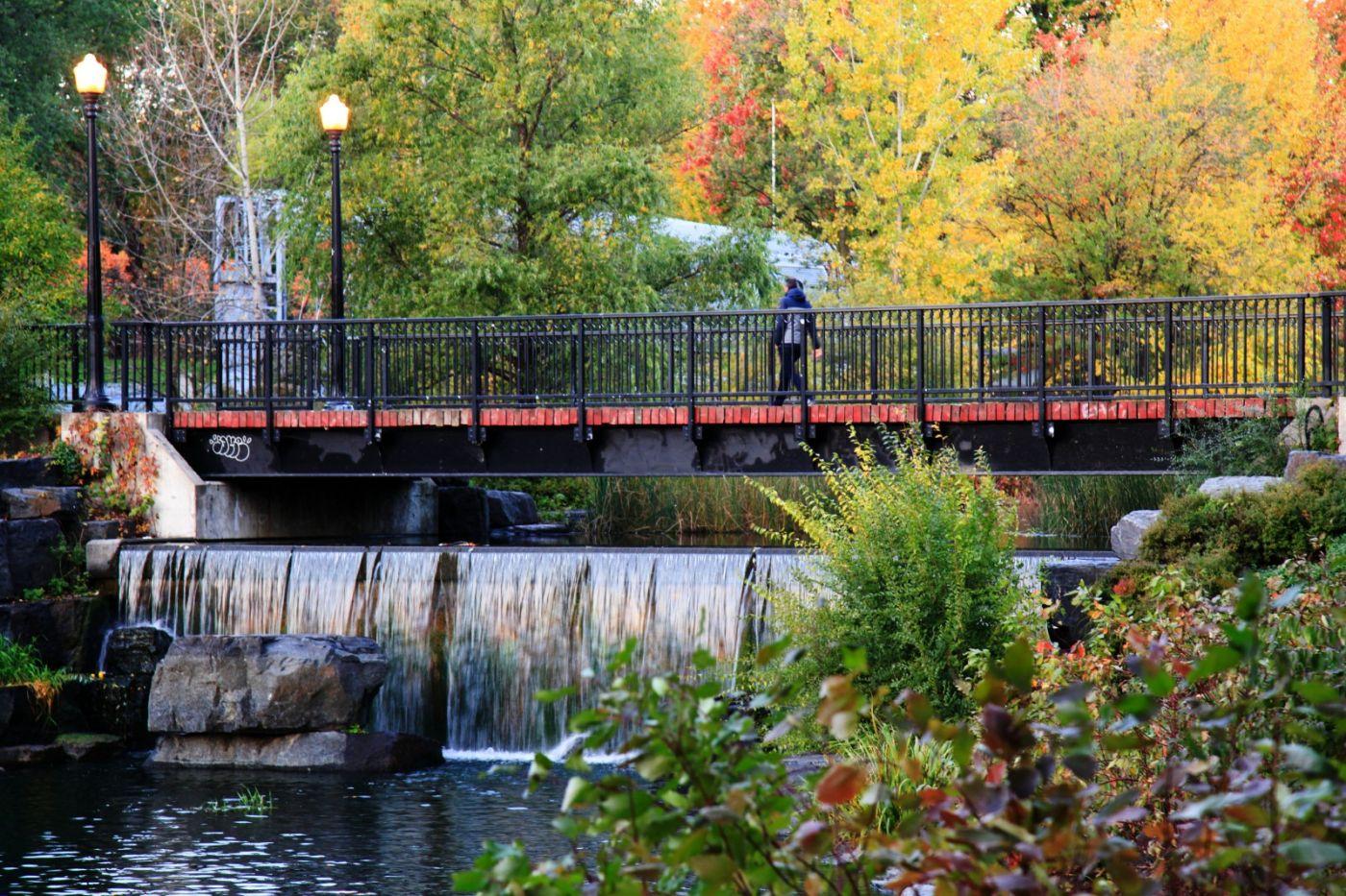 清晨在加拿大蒙特利尔公园赏枫_图1-15