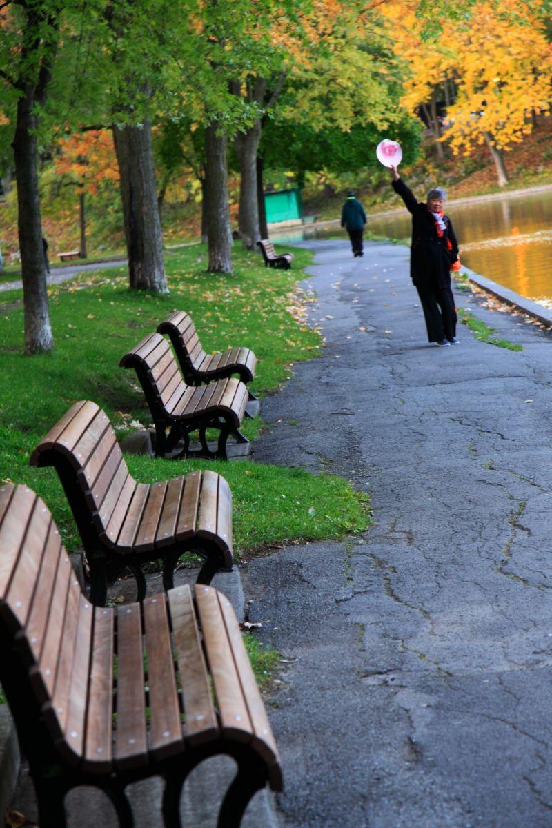 清晨在加拿大蒙特利尔公园赏枫_图1-19