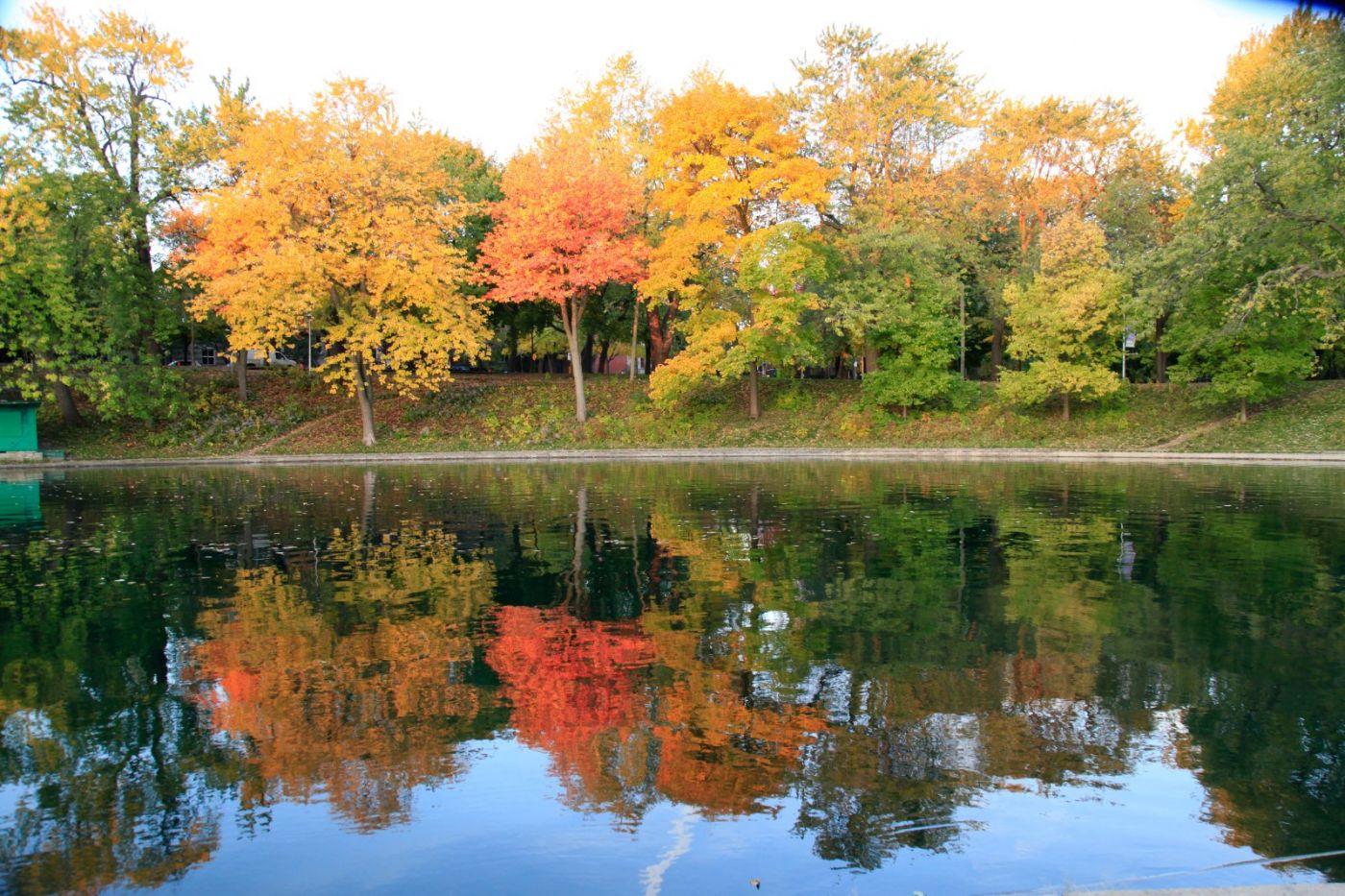 清晨在加拿大蒙特利尔公园赏枫_图1-22
