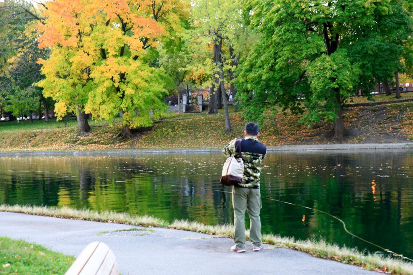 清晨在加拿大蒙特利尔公园赏枫_图1-23