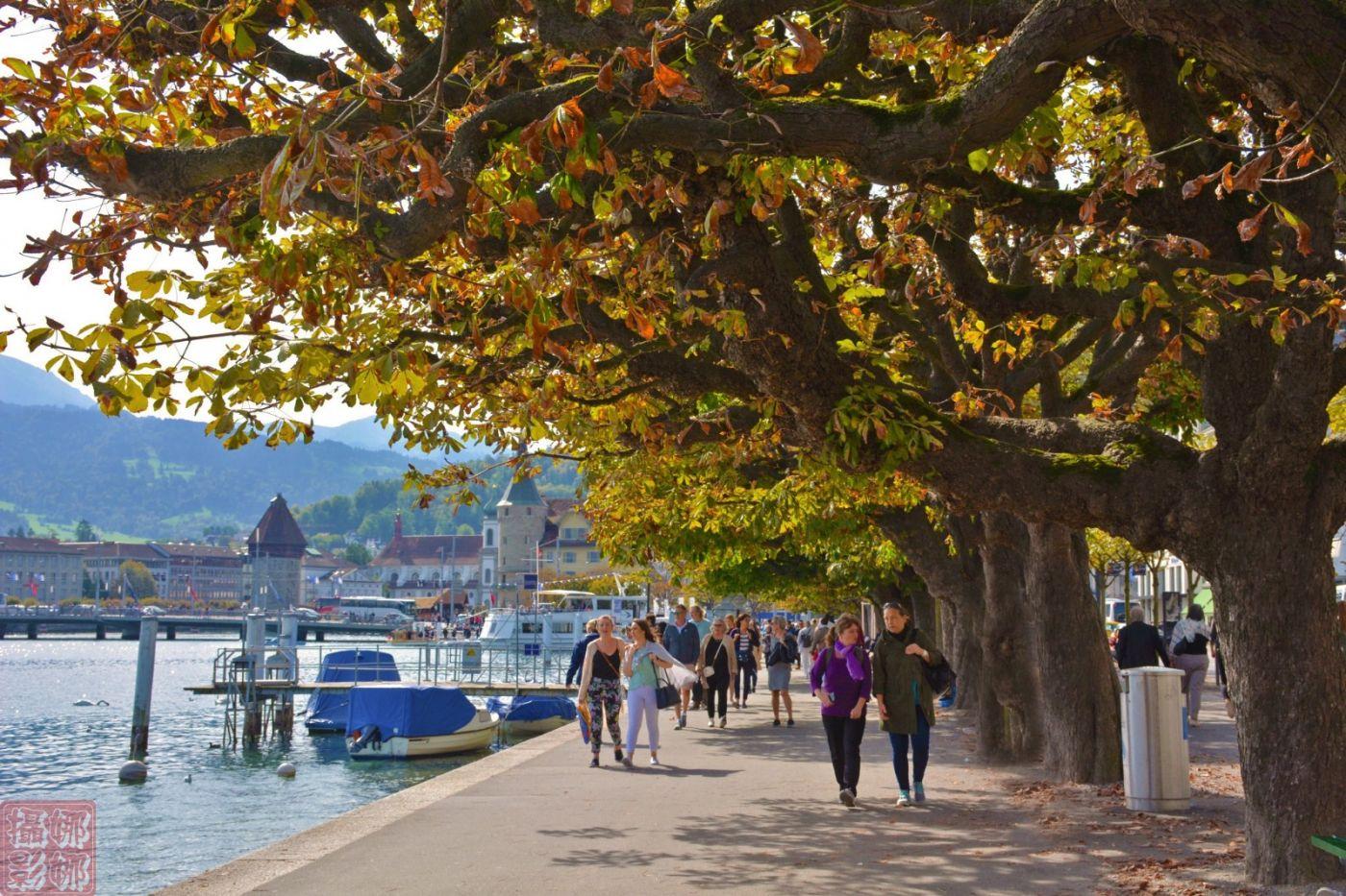 瑞士卢塞恩湖畔风光(一)_图1-16