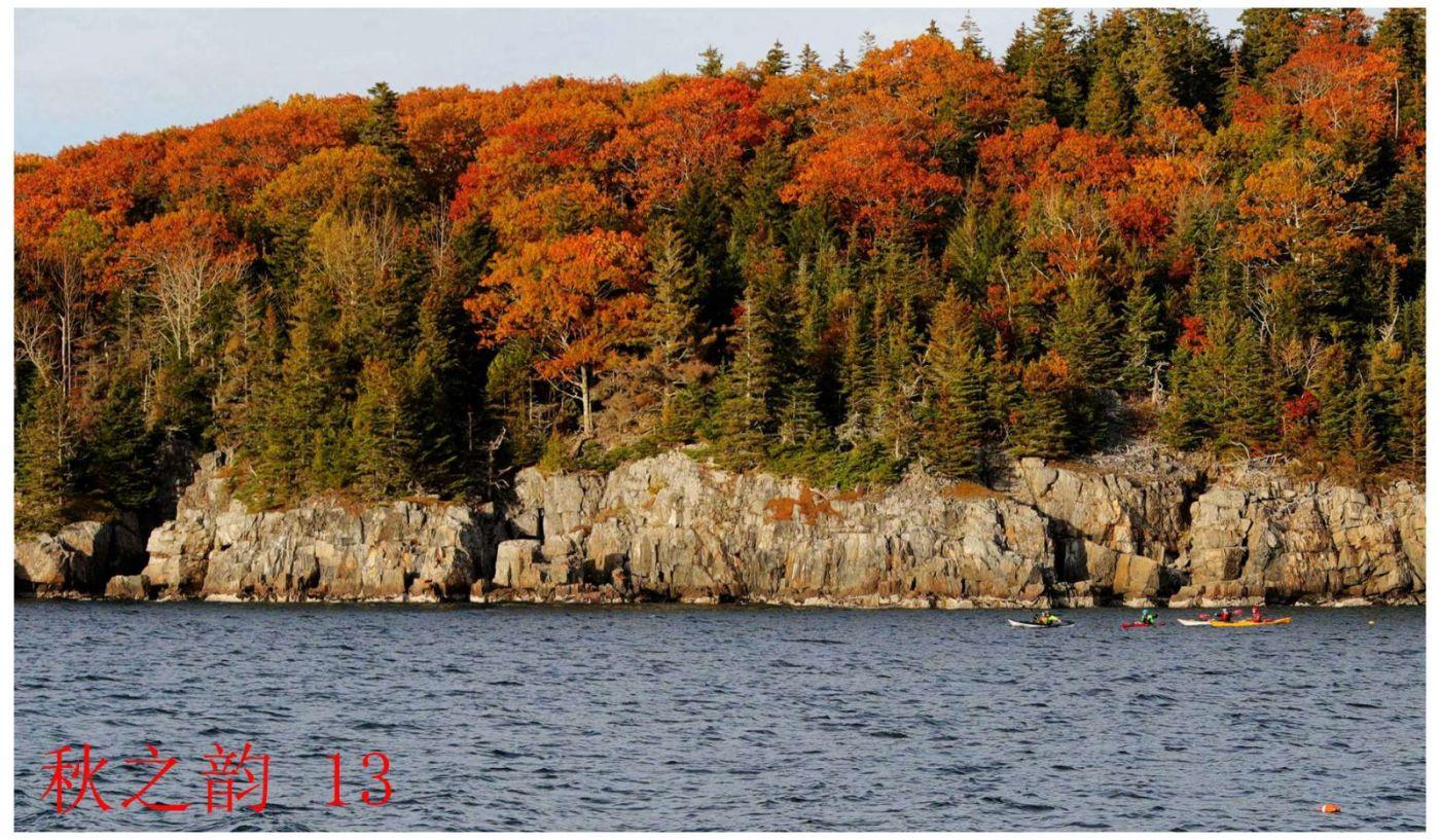 看万山红遍,层林尽染_图1-7