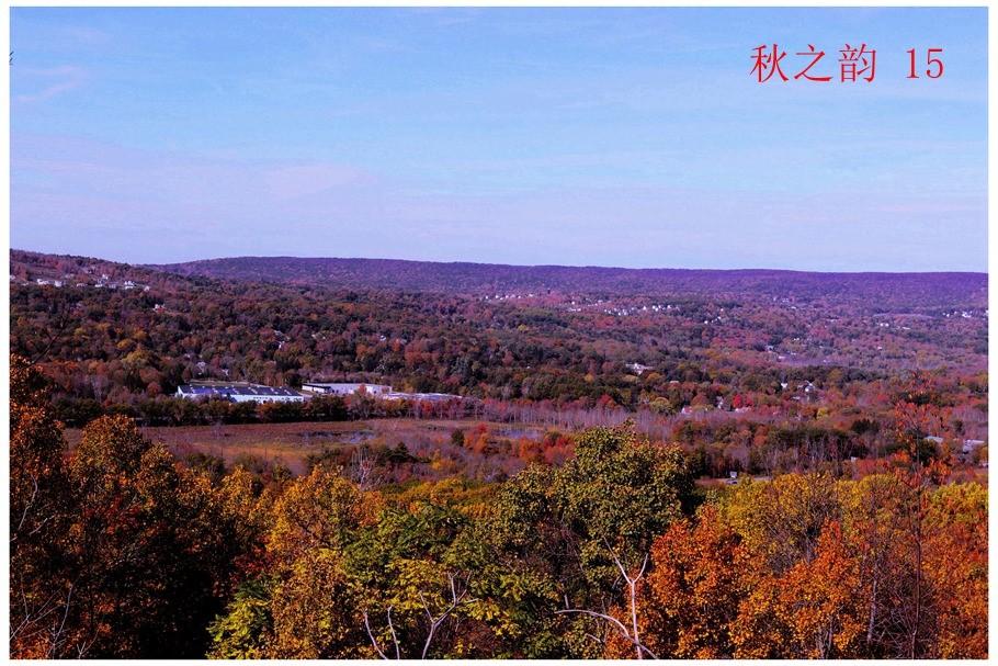 看万山红遍,层林尽染_图1-5