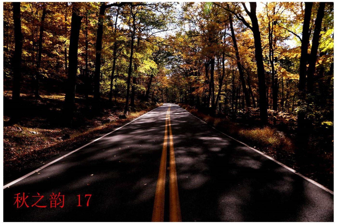 看万山红遍,层林尽染_图1-9