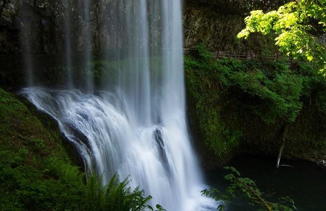 秋在银瀑布公园_图1-1