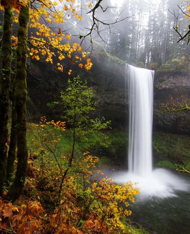 秋在银瀑布公园_图1-7