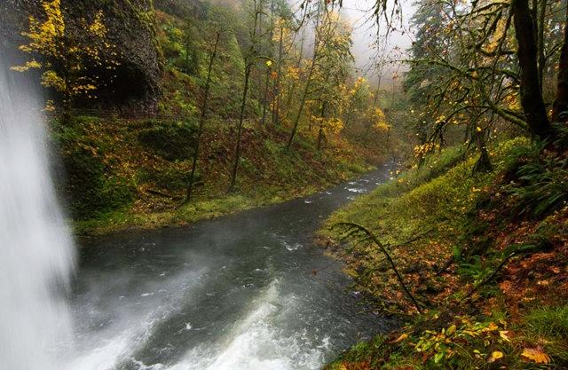 秋在银瀑布公园_图1-12