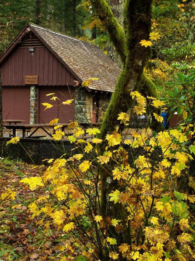 秋在银瀑布公园_图1-17