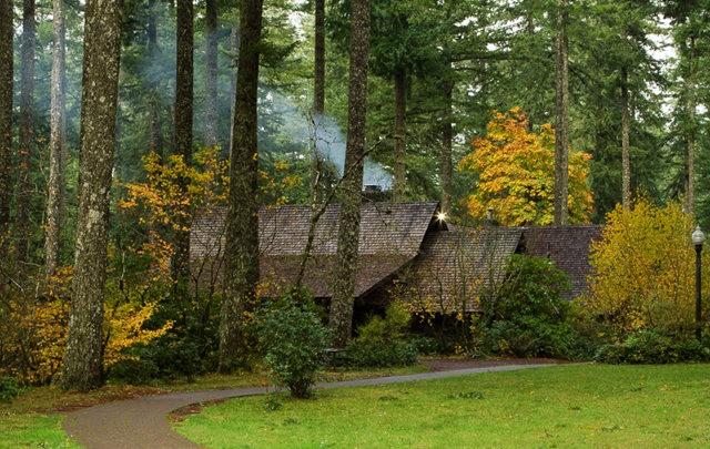 秋在银瀑布公园_图1-18