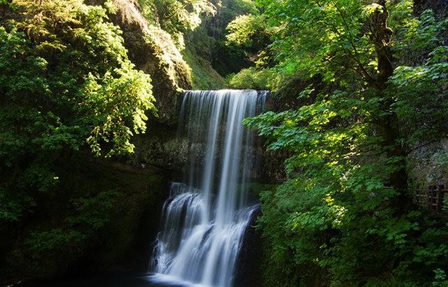 秋在银瀑布公园_图1-25