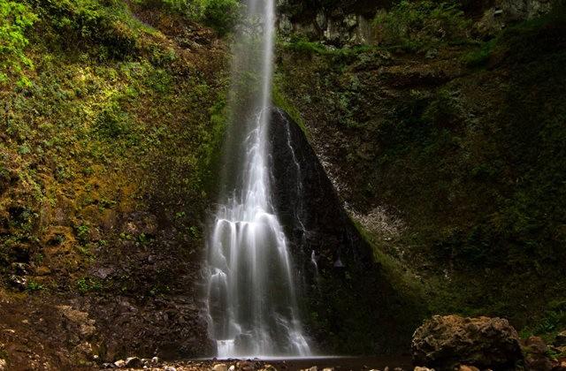 秋在银瀑布公园_图1-27