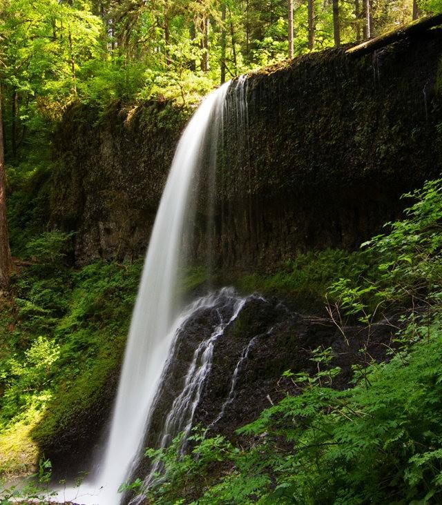 秋在银瀑布公园_图1-28