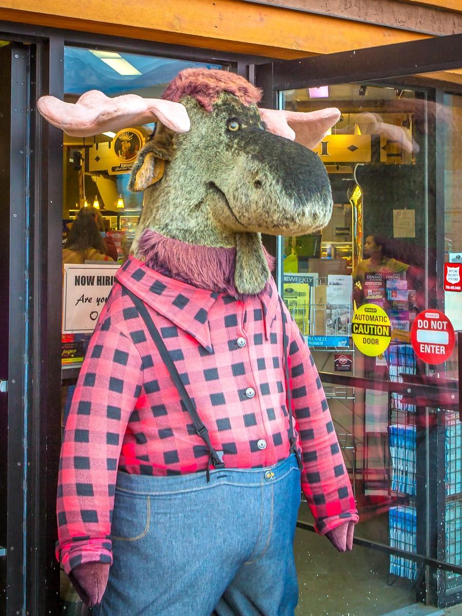 加拿大贾斯珀市,穿上皮衣皮靴的她们_图1-14