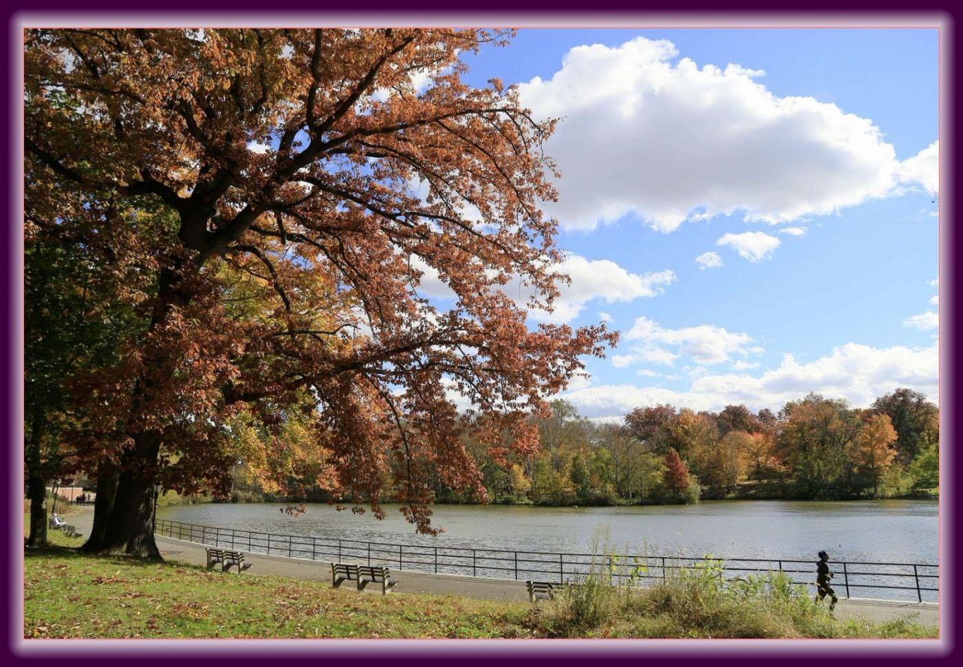 秋色满满的凯辛娜公园_图1-4