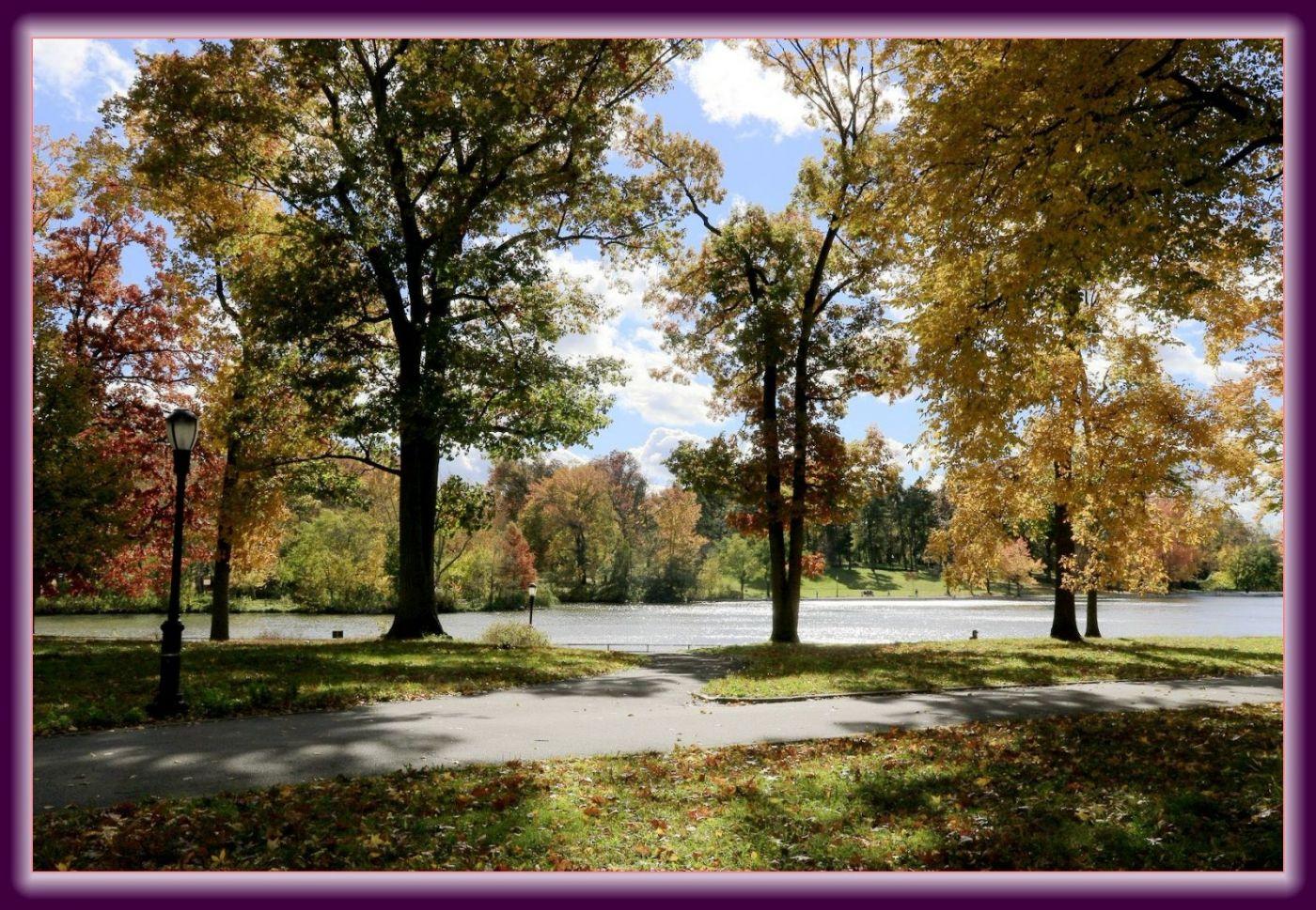 秋色满满的凯辛娜公园_图1-5