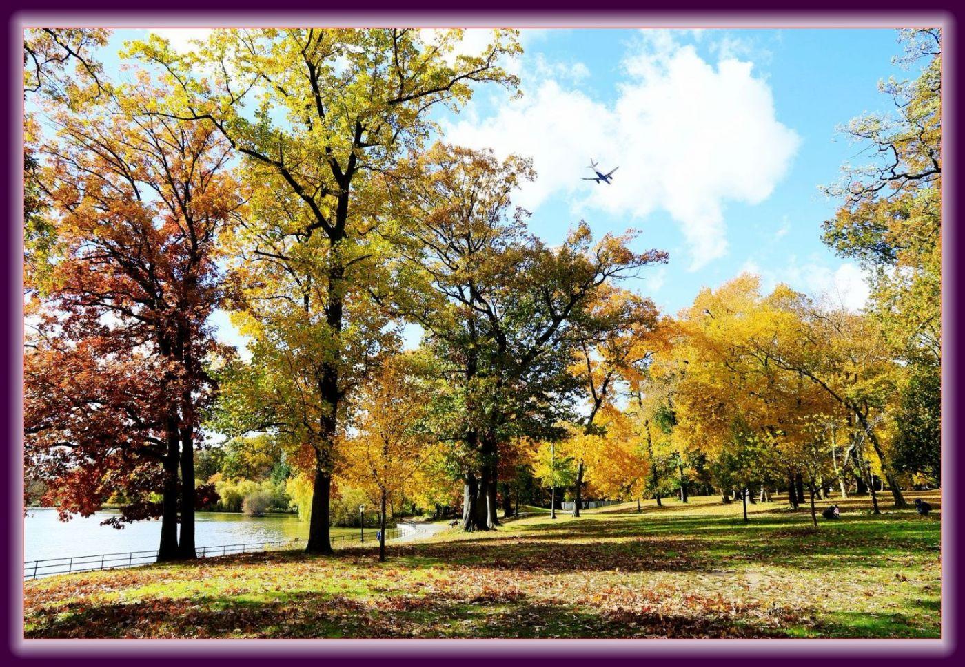 秋色满满的凯辛娜公园_图1-7