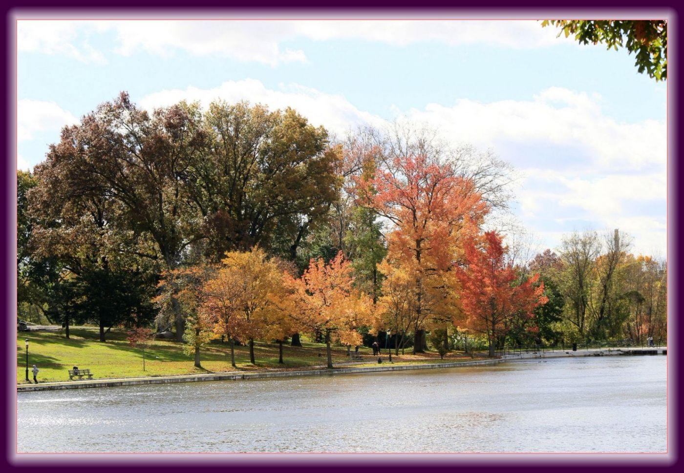 秋色满满的凯辛娜公园_图1-8