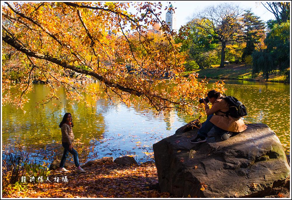 【龍的传人拍摄】秋雨过后中央公园中央路_图1-6