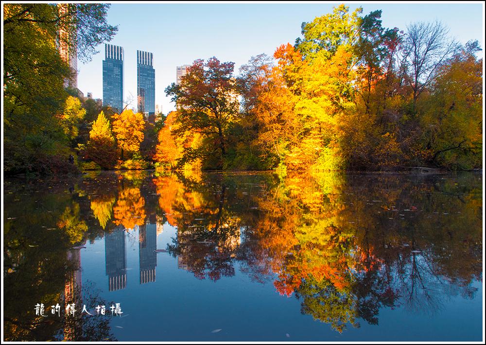 【龍的传人拍摄】秋雨过后中央公园中央路_图1-9