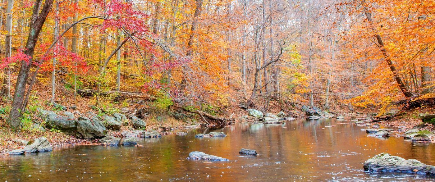 秋天年年有,美景天天变_图1-6