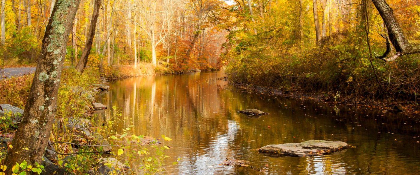 秋天年年有,美景天天变_图1-3