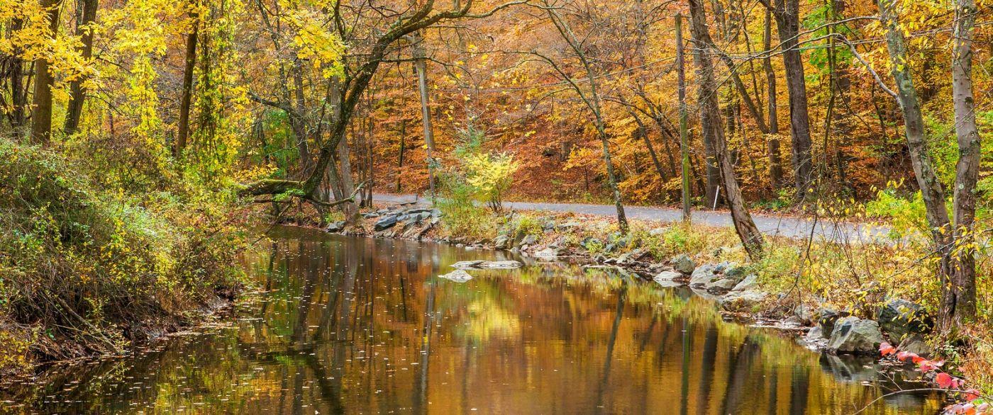 秋天年年有,美景天天变_图1-4