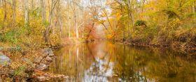 秋天年年有,美景天天变