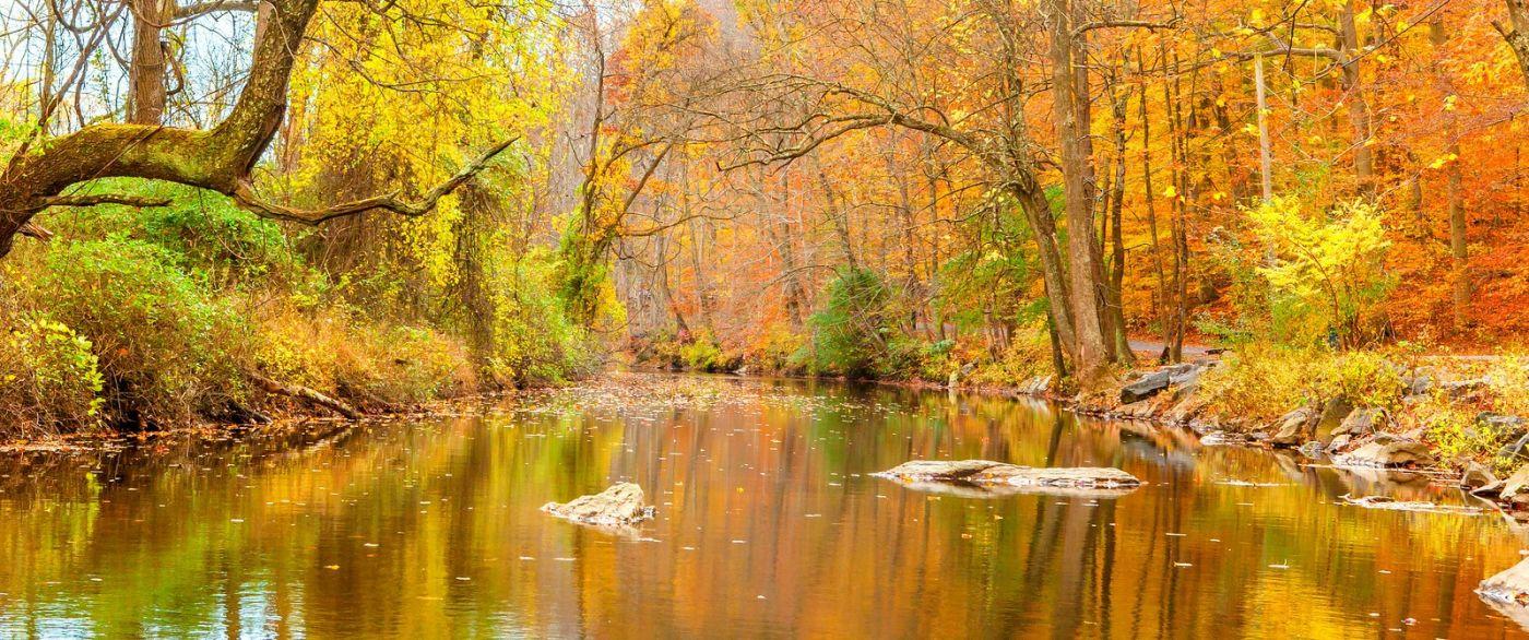 秋天年年有,美景天天变_图1-8
