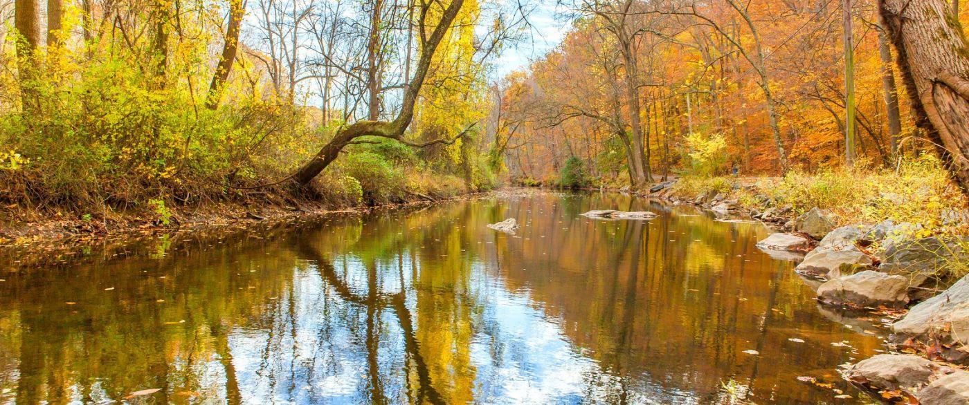 秋天年年有,美景天天变_图1-11