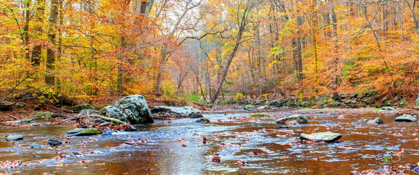 秋天年年有,美景天天变_图1-9