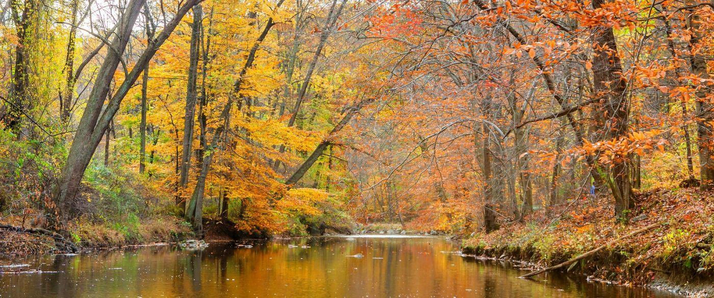 秋天年年有,美景天天变_图1-14