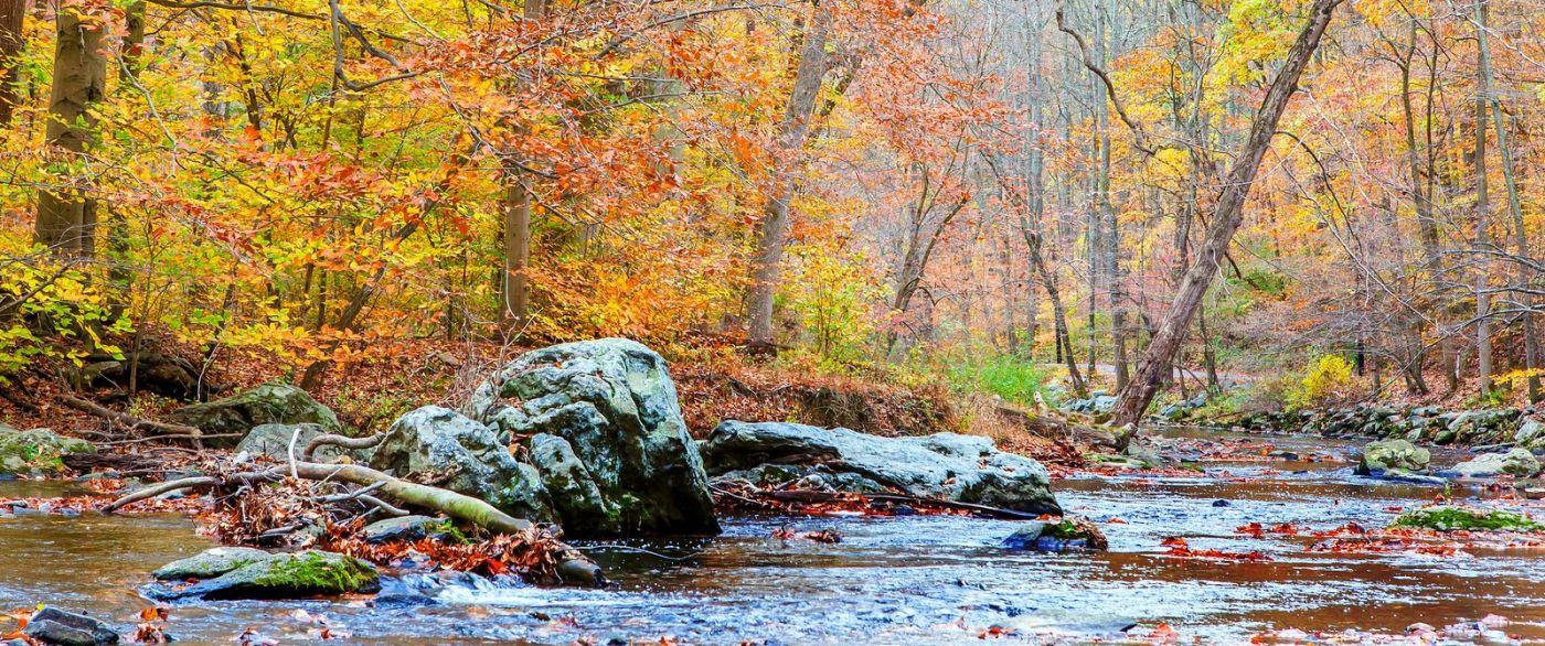 秋天年年有,美景天天变_图1-16
